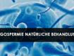Oligospermie Natürliche Behandlung